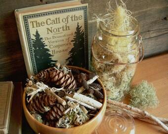 SALE!  Woodland Fir Potpourri, Balsam & Pine Natural Potpourri, Aromatherapy Rustic Bowl Filler, Chemical Free