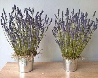 Dried Lavender With Metalic Pot -  Lavender Arrangement - Lavender Decoration - SET OF 2