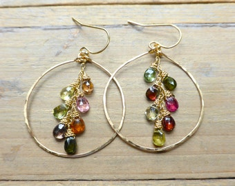 Mixed Tourmalines on 14k Gold Filled Drop Earrings