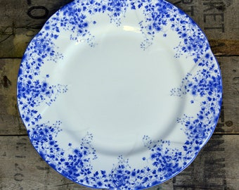 Dainty Blue Dinner Plate Royal Albert 10 1/4 Inch