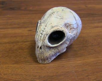 Mini Alien Skull Oddity Sci Fi Curiosity Sculpture