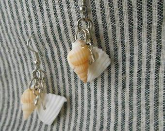 REAL Shells Earrings ~HANDMADE~ ooak