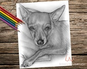 Printable coloring page, Adult Coloring Page, Instant download coloring, chihuahua, coloring page, coloring, coloring book for adult