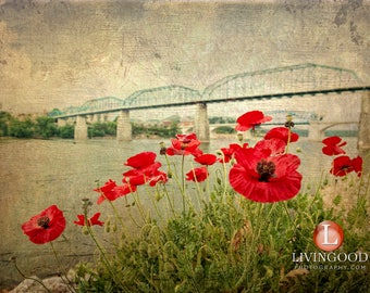 Chattanooga Landscape Photography - Walnut Street Bridge & Market Street Bridge in Chattanooga Tennessee.