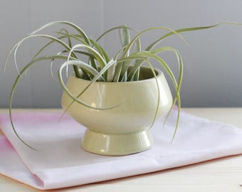 vintage mint green planter