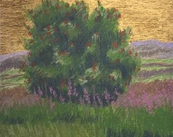 Rowan - Fine Art Landscape Print