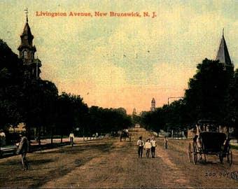 New Brunswick NJ, Livingston Ave View, c1910 REPRO Greeting Card NCC915895