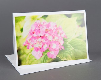 Blank photo notecard, Pink Hydrangea