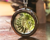 Irish Woodland Terrarium Locket, Real Moss and Fern Terrarium, Gifts from Ireland, Irish Gifts, Real Fern Locket, Irish Woodland Jewelry