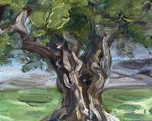 "St Simon's Oak, oil on panel, 4"" x 4"""