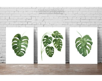 Monstera Tropical Leaves set 3 Art Print, Green Leaf Watercolor Painting, Home Garden Botanical Illustration, Living Room Palm Wall Poster