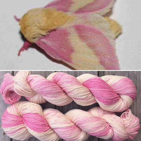 Rosy Maple Moth, indie dyed pima cotton sock yarn vegan