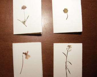 Set of 4 tickets. Card stock with pressed flowers, dried flowers.