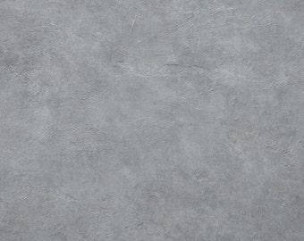 High Fashion Photography Backdrop In Vinyl Grey Concrete (V8026)