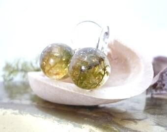 Real Moss Jewelry - Real Moss Earrings - Green Moss Earrings - Botanical Jewelry - Gold Flakes Earrings - Resin Earrings- Terrarium Jewelry