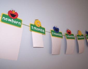 Elmo, Sesame Street Photo Banner, Elmo Banner, Sesame Street Party, First Birthday Banner, First Year, Elmo Party, Big Bird, Cookie Monster