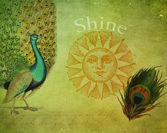 Peacock Art, Inspirational Art, Sun Print, Sun Art, Peacock Wall Art, Peacock Decor, Peacock Feather, Vintage Art, Collage Art