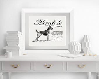 Airedale Terrier - A Retro - Vintage Style Dog Breed Wall Art Print for Dog Lovers With Dictionary Definition & Antique Illustration