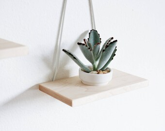 Modern Hanging Wall Planter