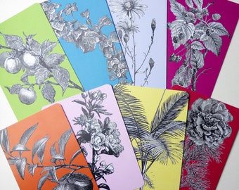 16 Printed Journal cards: 8 with Botanics + 8 Random