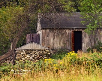 Farm in Charlton, MA Original Photography
