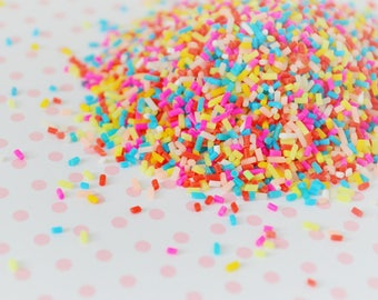 Colorful Rainbow Decoden Artificial Sprinkles - 10g