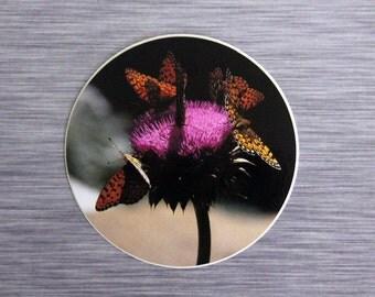 Butterfly Thistle Mini Bumper Sticker