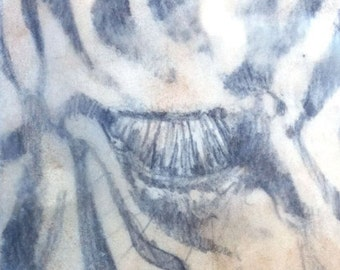 Zebra Eye, original encustic drawing by Canadian artist Kindrie Grove