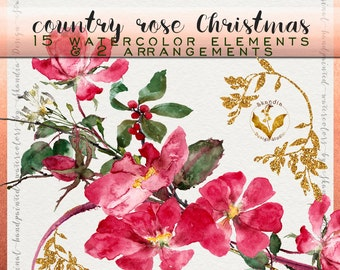 Watercolor Christmas Clipart, Watercolor roses, Christmas clipart, Christmas rose clipart, watercolor clipart, holiday clipart, rose clipart