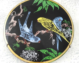 Stunning Budgie Wall Plate
