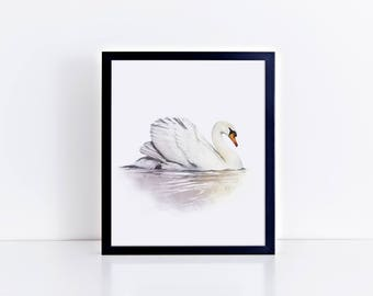 White Swan Print | Swan Wall Art | Swan Nursery | Swan Home Decor | Animal Wall Art | Swan Painting | Scandinavian Wall Art | White Swan