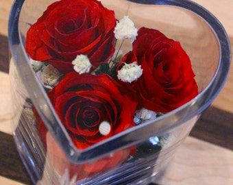 Eternity Roses,  Roses, REAL roses, Valentines Gifts, Gifts for her, Gifts for him, Valentines, Anniversary, Wedding, Couple Gifts, rose