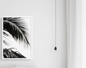 In the Shadow of the Palms |  Printable Poster|  Black and white Palm Tree Photography | Digital file | Instant Download |  Tropical Beach