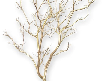 "24 12"" gold manzanita branches wedding centerpiece floral supply"