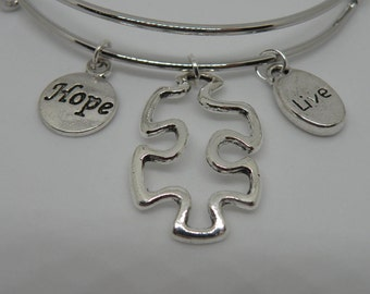 "Autism silver bangle bracelet with ""Hope"" and ""Live"" charms. Made by Alex"
