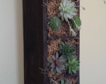 18 inch wall hanging succulent planter