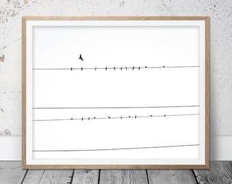 Bird On Wire, Bird Photography, Bird Photo, Birds On Wire art, Home Decor, Birds, Bird Art, Digital Download, Bird Wall Art, Black White