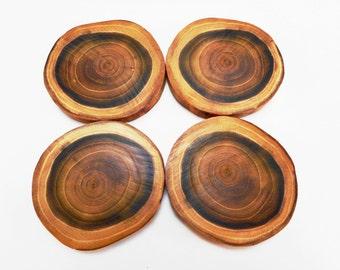 Wood coasters - Log coasters - Natural wood decor - Log slices - Log cabin decor - Rustic wood decor - Rustic log decor - Black locust wood
