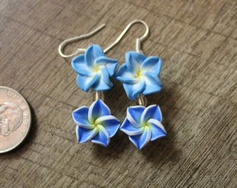 Hawaiian Island earrings