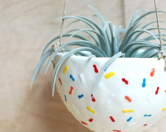 Small Hanging Planter - White with Colorful Sprinkles - Modern Ceramics - Ceramics and Pottery - Air Plant