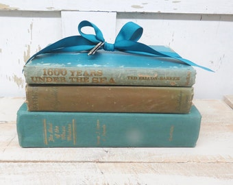 Vintage Books, Aqua Blue Beige Books, Old Blue Books, Decor Books, Antique Books, Home Office Decor, Instant Library, Shabby Cottage Chic