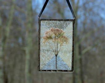 Pressed flower suncatcher, stained glass wildflower ornament, unique flower art, Joe Pye Weed, pink flower gift under 30, dried flowers