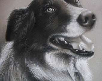 CUSTOM Dog Drawing From your photo - 11x14 -  Realistic Hand drawn fine art - Charcoal portrait - Canine, Puppy, pet portrait painting