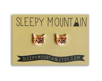 Cat Earrings - Kitten Studs