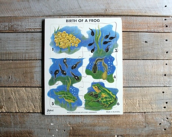 Vintage Tadpole - Frog Puzzle