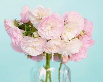 Bouquet of Pink and White Roses Photo Print, Rose Photography, Flower Photography, Garden Photography, Pink and White,
