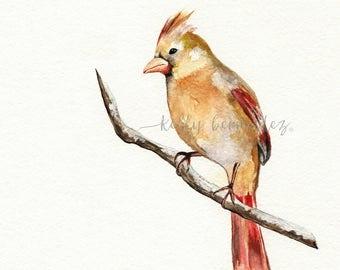 Winter Cardinal Bird, Watercolor, Bird art, Printable Art, Printable Watercolor, Instant Download