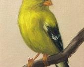 Original Oil Painting Little Goldfinch
