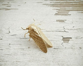 SALE summer sounds - golden cicada brooch
