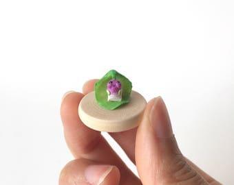 Micro Radish Claybie